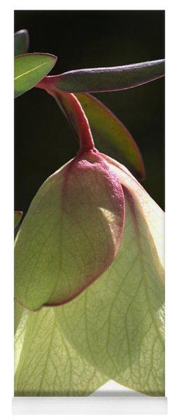 Qualup Bell Flower  Yoga Mat