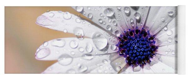 Rain Soaked Daisy Yoga Mat