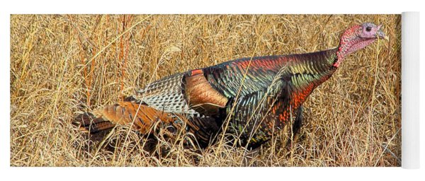 Rainbow Turkey Yoga Mat