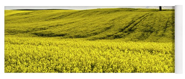 Rape Landscape With Lonely Tree Yoga Mat
