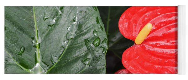 Red Anthurium Flower Yoga Mat