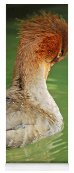 Red Breasted Merganser Yoga Mat