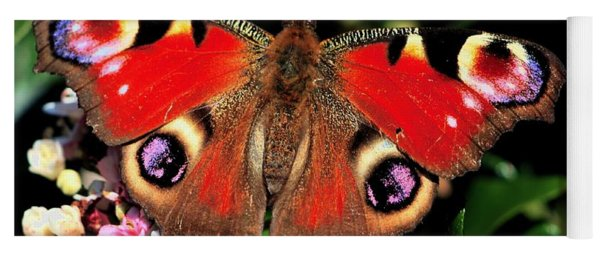Red Butterfly In The Garden Yoga Mat