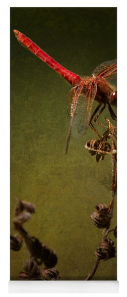 Red Dragonfly On A Dead Plant Yoga Mat
