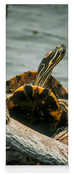 Red Eared Slider Turtle Yoga Mat