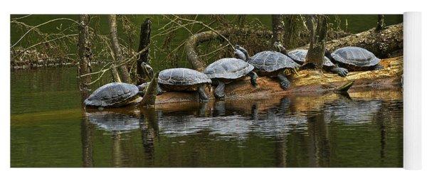 Red-eared Slider Turtles Yoga Mat
