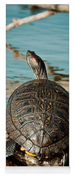 Red Eared Slider Xxl Yoga Mat