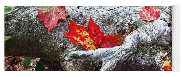 Red Fall Against Grey Yoga Mat
