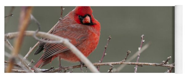 Red In Winter Yoga Mat