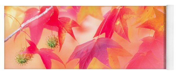 Red Leaves With Backlit, Autumn Yoga Mat