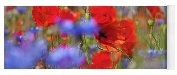 Red Poppies In The Maedow Yoga Mat