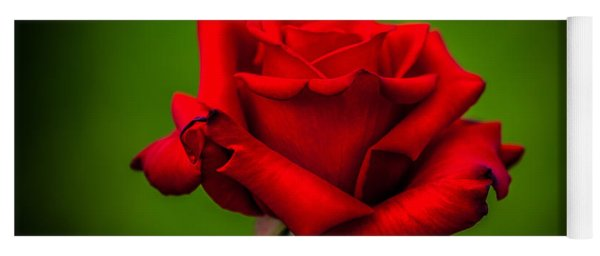 Red Rose Green Background Yoga Mat