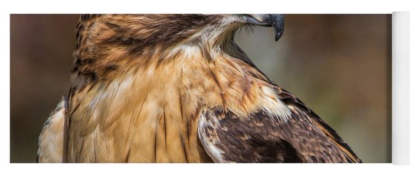 Red Tail Hawk Yoga Mat