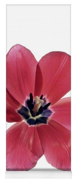Red Transparent Tulip Yoga Mat
