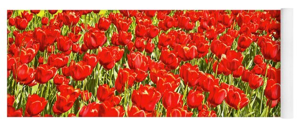 Red Tulip Field On Island Mainau Yoga Mat