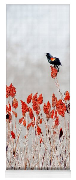 Red Winged Blackbird On Sumac Yoga Mat