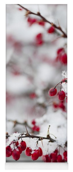 Red Winter Berries Under Snow Yoga Mat