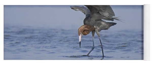 Yoga Mat featuring the photograph Reddish Egret Fishing Texas by Dave Welling
