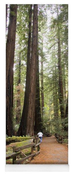 Redwood Trees Yoga Mat