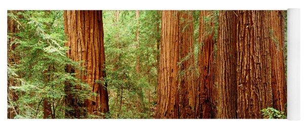 Redwoods Muir Woods Ca Usa Yoga Mat