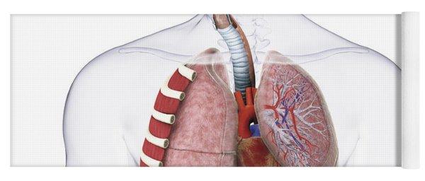 Respiratory System, Illustration Yoga Mat