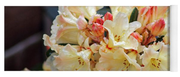 Rhododendron Nancy Evans Yoga Mat