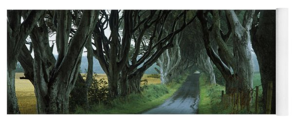 Road At The Dark Hedges, Armoy, County Yoga Mat