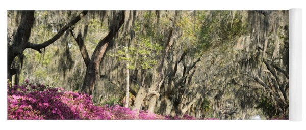 Road With Azaleas And Live Oaks Yoga Mat