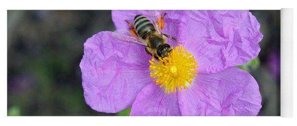 Rockrose Flower With Bee Yoga Mat