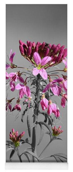 Rocky Mountain Bee Plant Sc Yoga Mat