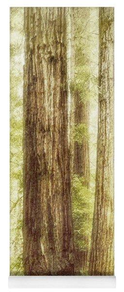 Romantic Forest Muir Woods National Monument California Yoga Mat