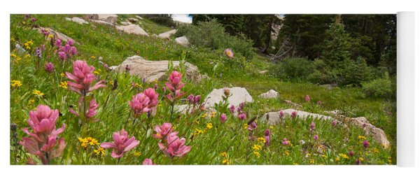 Yoga Mat featuring the photograph Rosy Paintbrush And Trees by Cascade Colors