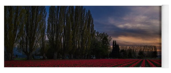 Rows Of Tulips And Tall Trees Yoga Mat