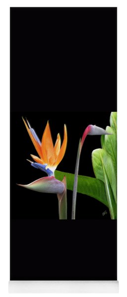 Royal Beauty II - Bird Of Paradise Yoga Mat