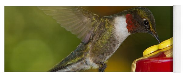 Yoga Mat featuring the photograph Ruby-throat Hummer Sipping by Robert L Jackson
