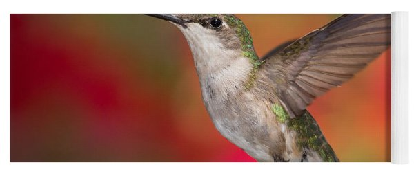 Ruby Throated Hummingbird Yoga Mat