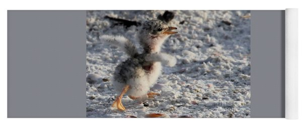 Running Free - Least Tern Yoga Mat