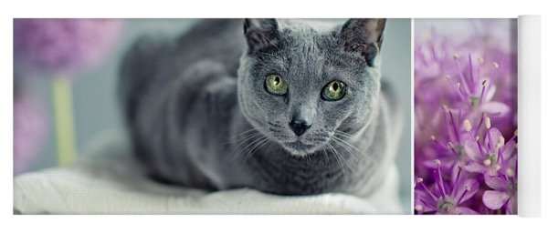 Russian Blue Collage Yoga Mat