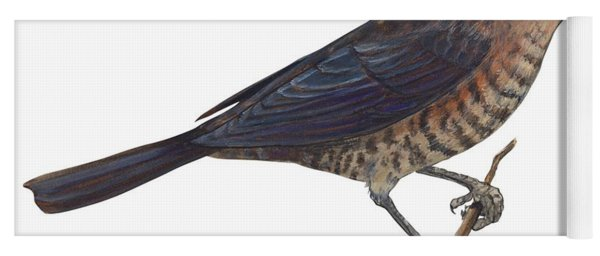 Rusty Blackbird  Yoga Mat