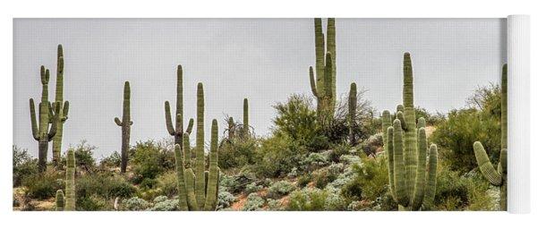 Saguaro Cactus  Yoga Mat
