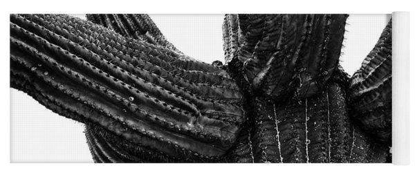 Saguaro Cactus Black And White 3 Yoga Mat