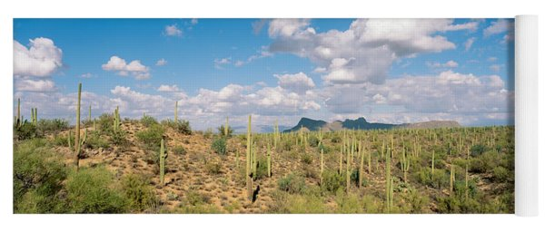 Saguaro National Park Tucson Az Usa Yoga Mat