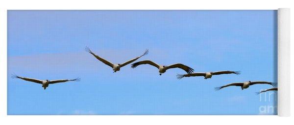 Sandhill Crane Flight Pattern Yoga Mat