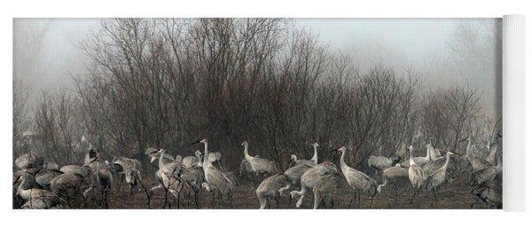 Sandhill Cranes In The Fog Yoga Mat