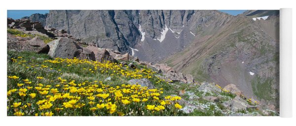 Yoga Mat featuring the photograph Sangre De Cristos Crestone Peak And Wildflowers by Cascade Colors