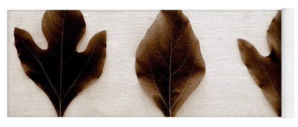 Sassafras Leaves In Sepia Yoga Mat
