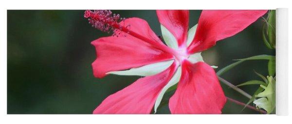 Scarlet Hibiscus #3 Yoga Mat