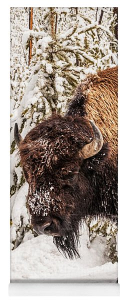 Scary Bison Yoga Mat