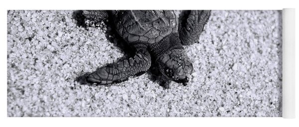 Sea Turtle In Black And White Yoga Mat