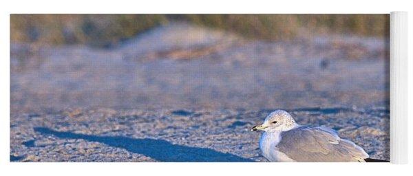 Seagull At Sunrise Yoga Mat